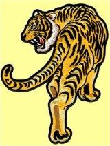 ワッペン 見返り虎 左向き 中