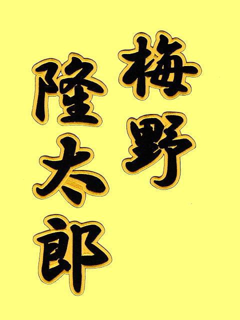 梅野隆太郎の画像 p1_15