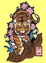 虎虎オリジナルワッペン 桜と虎 水野祐介デザイン